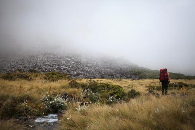 Fog Nelson Lakes Nationalpark