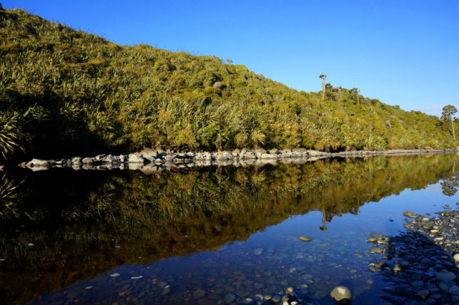 Gillespies Lagoon reflection