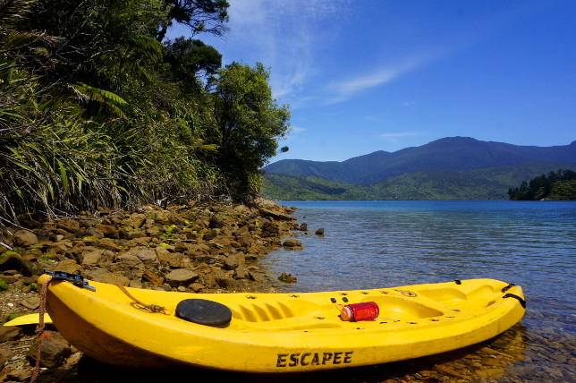 kayaking in marlborough sounds