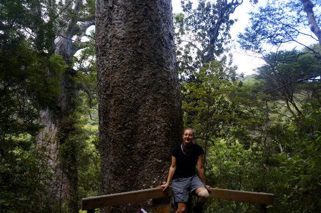 Me and a Kauri Tree.