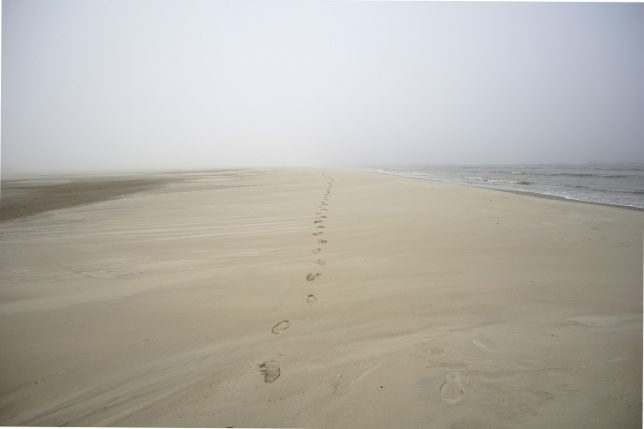 misty beach north sea germany