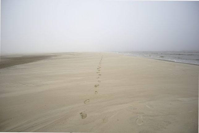 misty beach north sea germany
